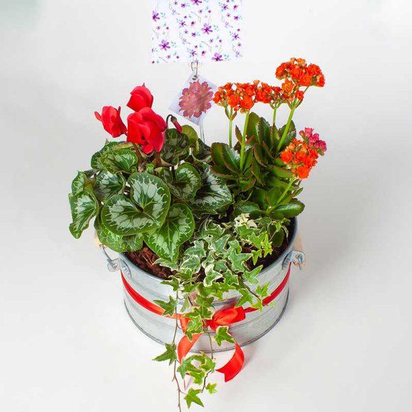 گلدان باغ گلها (سایز بزرگ)