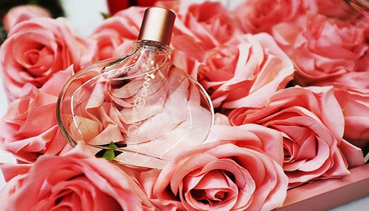 عطر های خاطره انگیز